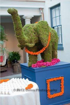 Exotic, mossed elephant display with marigold garland. Union Photography