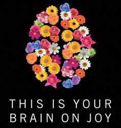 This is your brain on joy. Think happy thoughts! Learn To Love, How To Make, Fleur Design, Joy Quotes, Life Quotes, Random Quotes, Choose Joy, Joy And Happiness, Happiness Project