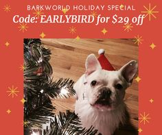 Looking for a few last minute holiday items? Don't forget the gift of BarkWorld 2016! Use the code: EARLYBIRD FOR $29 off your ticket!