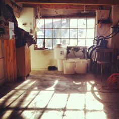 Sunny autumn in a garage. All those wonderful colors.