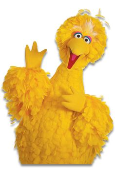 You've always wondered and now you know: Big Bird would look like a freshly-plucked chicken. Next up: a model of what Big Bird looks like inside. Big Yellow, Mellow Yellow, Sesame Street Characters, Cartoon Characters, Sesame Street Live, Big Bird Sesame Street, Singing Happy Birthday, Bird Wallpaper, Jim Henson