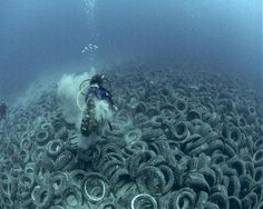 Two million tyres to create a reef. Great idea!