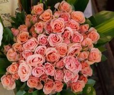 #pinkroses #pretty #flowers #florals