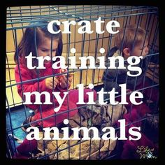@lifeofmomshow Crate Training, 3 Kids, Little My, Just Kidding, Mom Humor, Laughter, Funny, Instagram Posts, Life