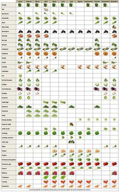 Calendarios de frutas, verduras, pescados... De temporada