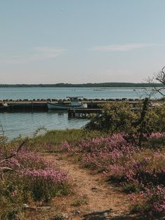 Öland Sweden: 30 Best Things To Do and See Stuff To Do, Things To Do, Good Things, Top Place, Bucket List Destinations, Sweden Travel, Travel Inspiration, Travel Tips, Places To Visit