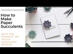 Paper Succulents with the Oh So Succulent bundle from Stampin' Up! - YouTube