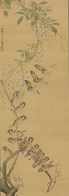 Sparrows Alighting on Wisteria Artist: Nagasawa Rosetsu (Japanese, 1754–1799) Period: Edo period (1615–1868) Date: ca. 1795–99 Culture: Japan Medium: Hanging scroll; ink and color on silk