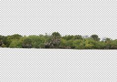 view from by Gobotree, including cutout plants, vegetation, tree