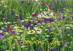 Flowers Joy (wall calendar 2013 DIN A3 landscape) von Calvendo, http://www.amazon.de/dp/3660085146/ref=cm_sw_r_pi_dp_NWEerb0N2XJGC