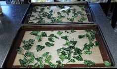 Kale chips are fun and nutritious. Check out our new short 2:42 min. video showing How to Make Kale Chips yummy!