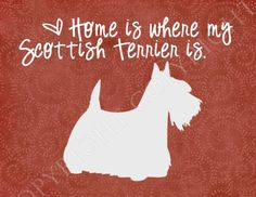 Scottish Terrier Art Print- see this being a Christmas present!