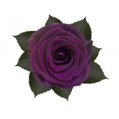 Verkrijgbaar in verschillende maten, met of zonder steel! Neem een kijkje op onze webshop voor meer informatie: Www.dutchdecoflowers.com