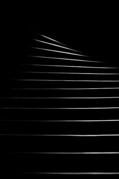 Delicate lines of light...