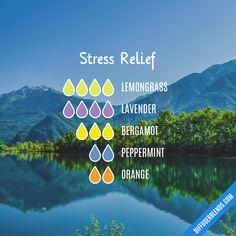 Stress Relief Essential Oils, Calming Essential Oils, Essential Oils For Headaches, Essential Oils Guide, Essential Oils For Sleep, Essential Oil Diffuser Blends, Doterra Essential Oils, Essential Oil Combinations, Cinnamon Essential Oil