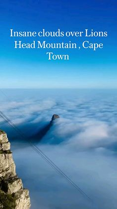 South Afrika, Beautiful Places To Travel, Africa Travel, Travel Advice, Cape Town, Picture Quotes, Lions, Travel Inspiration, Travel Destinations