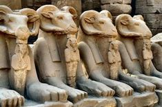 """ram-headed sphinxes representing the God Amon-Ra, from the Forecourt (""""the Court of King Sheshonq I"""") of 'Ipet-sut' (""""Karnak""""), the highly sacred Precinct of Amon-Ra at 'Uaset'-Thebes. Between the front paws of the sphinxes, statuettes of King Ramses. Egyptian Mythology, Ancient Egyptian Art, Ancient Aliens, Ancient History, Egyptian Temple, Ancient Mysteries, Ancient Artifacts, Architecture Antique, Old Egypt"""