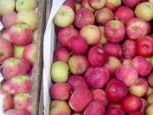 Jak udělat jablečnou marmeládu | recept | JakTak.cz Plum, Apple, Fruit, Food, Apple Fruit, Essen, Meals, Yemek, Apples