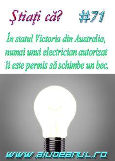 Cultura General, Portal, Light Bulb, Fun Facts, Funny Memes, Lightbulbs, Electric Light, Funny Facts, Hilarious Memes