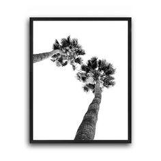 Palm tree print, Tropical wall art, Nature print, Printable palm, Printable palm tree, Black and white palm, Palm decor, Scandinavian poster