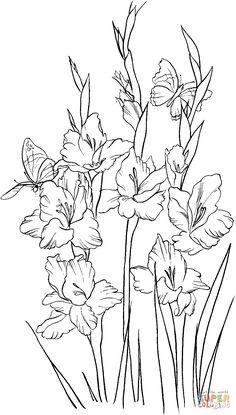 Gladiolus 2 coloring page | SuperColoring.com