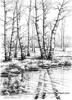 Varvara Harmon - Artist and Illustrator - Original Paintings, Pen, Pencil Drawings Landscape Sketch, Landscape Drawings, Landscape Illustration, Landscape Art, Ink Pen Drawings, Realistic Drawings, Tree Sketches, Drawing Sketches, Sketching