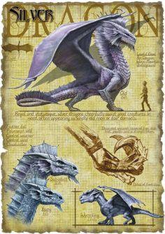 Favorite dragon ever! Silver Dragon by Richard Sardinha King Neil Magical Creatures, Fantasy Creatures, Dragon Medieval, Dragon Oriental, Dragon Rey, Dragon Book, Dragon Anatomy, Cool Dragons, Dragon's Lair