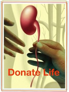 donate life and save a life