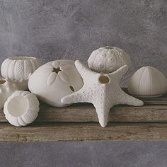 Porcelain Sea Life tealight candleholders by Roost