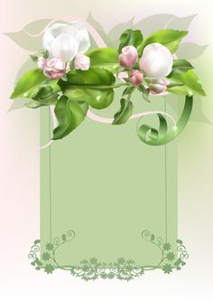 Fiori - background