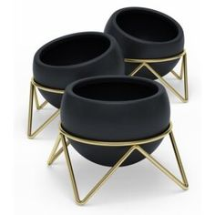 Display your plants with a modern twist with the Potsy Planters by Umbra. Featuring metal wire frames, this trio of ceramic planters are perfect for showcasing succulents, faux plants and more on a desk, table or window sill with effortless style. Gold Planter, Black Planters, Modern Planters, Indoor Planters, Faux Plants, Potted Plants, Small Indoor Plants, Ceramic Plant Pots, Square Planters