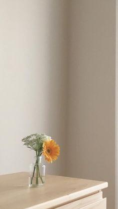 Minimal Wallpaper, Soft Wallpaper, Iphone Wallpaper Tumblr Aesthetic, Iphone Background Wallpaper, Aesthetic Pastel Wallpaper, Scenery Wallpaper, Aesthetic Backgrounds, Flower Wallpaper, Photographie Portrait Inspiration