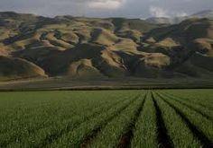 San Joaquin Valley California
