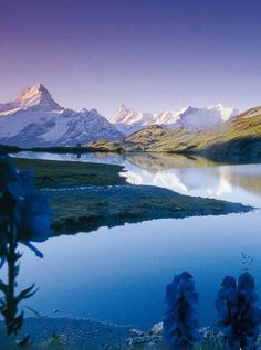 Hiking Berner Oberland Traverse and seeing the Alps, Bernese Oberland, Switzerland Art Et Nature, Image Nature, Zermatt, Grindelwald Switzerland, Beautiful World, Beautiful Places, Beautiful Scenery, Amazing Places, Stunning View