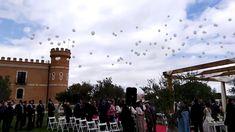Suelta de globos de helio en Monte la Reina Louvre, Building, Travel, Balloon Release, Wedding Balloons, Helium Balloons, Wine Cellars, Viajes, Buildings