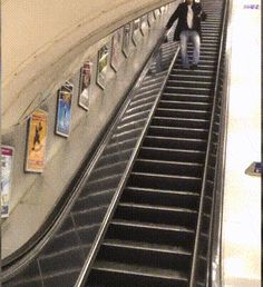 2320896 1418 Literally, that escalated quickly (16 GIFs)