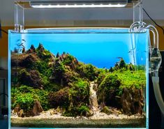 Did you know that it's a proven fact that, according to a recent study, fishkeeping is a hobby that's great for your physical and mental wellbeing? Well, it's true! Aquarists can look forward to enjoying reduced heart rates and lower blood pressure, not to mention being more chilled-out folks than the average fishless person. Aquarium Landscape, Aquarium Design, Planted Aquarium, Aquarium Fish, Cool Fish Tanks, Tropical Fish Tanks, Acrylic Aquarium, Nano Tank