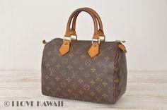 Louis Vuitton Monogram Speedy 25 Hand Bag M41528