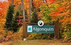 Algonquin Provincial Park- Ontario