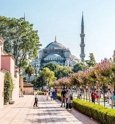 ���🇷 On my way to the blue Mosque 🎉 ▪️ #sultanahmet #bluemosque #sultanahmetcamii #camii #mosque #architectanddesign #hello_worldpics Istanbul Travel, Blue Mosque, Beautiful Mosques, Le Palais, Turkey Travel, Istanbul Turkey, Photo Location, Travel Inspiration, Taj Mahal