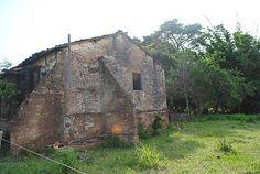 antigas ruínas de tijolos de barro da extinta Olária Fazenda São Luiz em Mirandópolis SP: