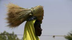 - Mulher carrega fardo de capim seco em uma comunidade de Maiduguri, na Nigéria.  Foto: Afolabi Sotunde / Reuters