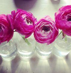 Pretty Flowers & Mason Jars. Love.