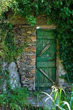 Porta verde para o jardim em uma parede de pedras, com muitas plantas ao redor.