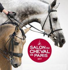 Le site MonEtape.com, 1er portail d'hébergement et de tourisme pour les passionnés de cheval et de sports équestres organise un grand concours d'automne. A gagner: 2 places pour le Salon du Cheval de Paris, fin novembre prochain pour le grand gagnant ! Pour jouer, c'est très simple: il suffit de s'inscrire gratuitement sur http://upvir.al/ref/Y9966590 !