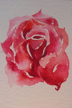 watercolor rose tattoo - Google Search