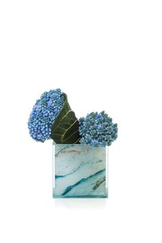 Collezioni: Floreali | Armani/Fiori: Muscari e foglia di clarinervium su vaso plexiglass marmo azzurro.