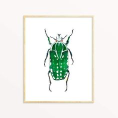 Every wall deserves a beautiful piece of art.This Beetle Art Print has just the right amount of whimsy and fun. This is an archival art print of original watercolor painting by Sarah Martinez. This high quality print is made with pigment based inks on heavy 100% cotton fine art paper. The print is lightly initialed b Nature Themed Nursery, Nursery Art, Nursery Decor, Playroom Wall Decor, Room Decor, Green Beetle, Original Artwork, Original Paintings, Bug Art