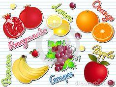 Vector Illustration Doodle of Winter Fruits.