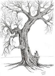 Image result for drawing trees pencil tutorial